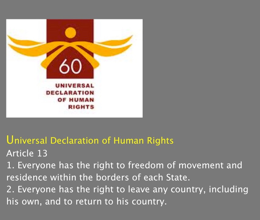 About the Universal Declaration of Human Rights
